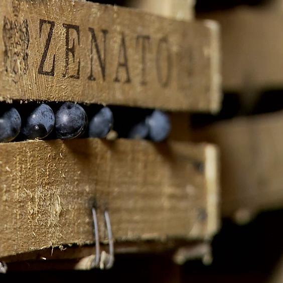 Wine 201: Valpolicella w/ Zenato