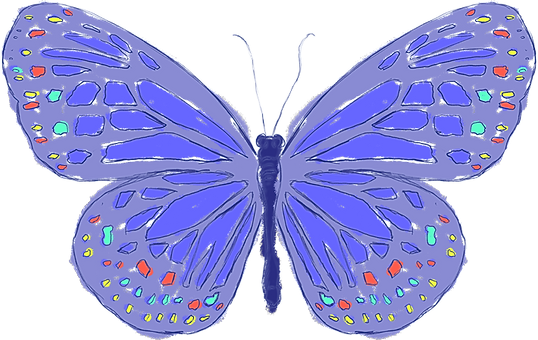 butterfly-sketch.png