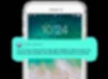 ITALIAN Smartphone White_Mode PUSH notif
