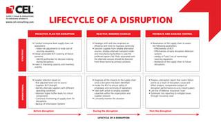 Disruption Lifecycle.jpg