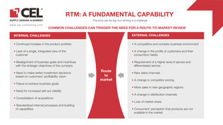 RTM_A FUNDAMENTAL CAPABILITY-02 (1).jpg