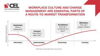 Workplace culture and change management are essential parts of a route to market transformation