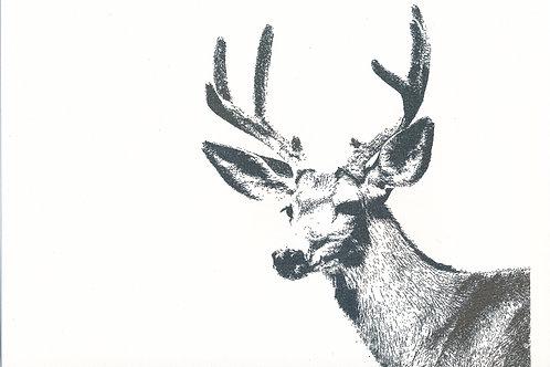 Hjort