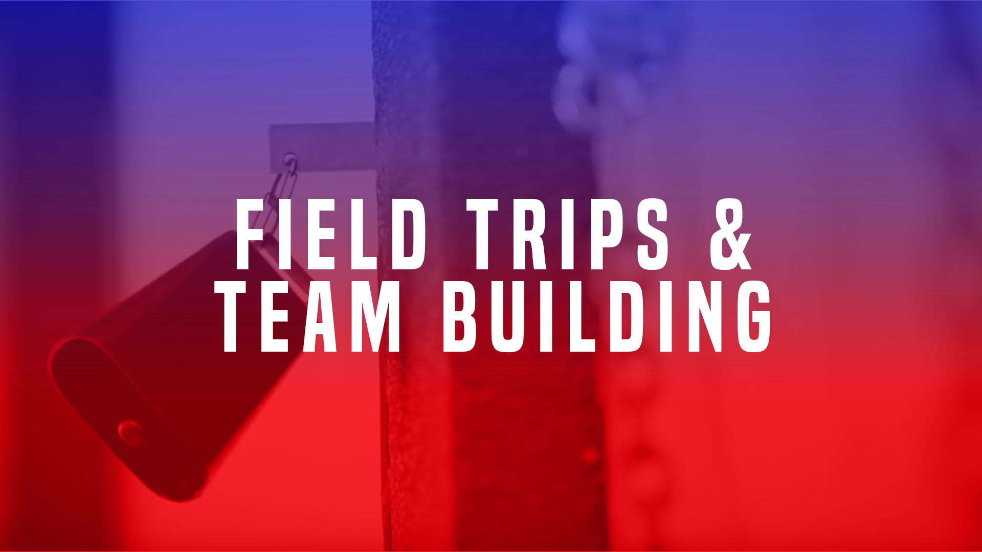Field Trips and Team Building