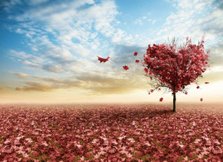 Que la gentillesse profonde et désintéressée reste toujours votre premier choix dans n'importe quell