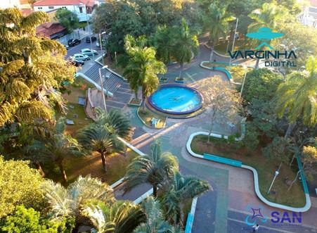 Praça da Fonte receberá exemplares de Palmeira-real
