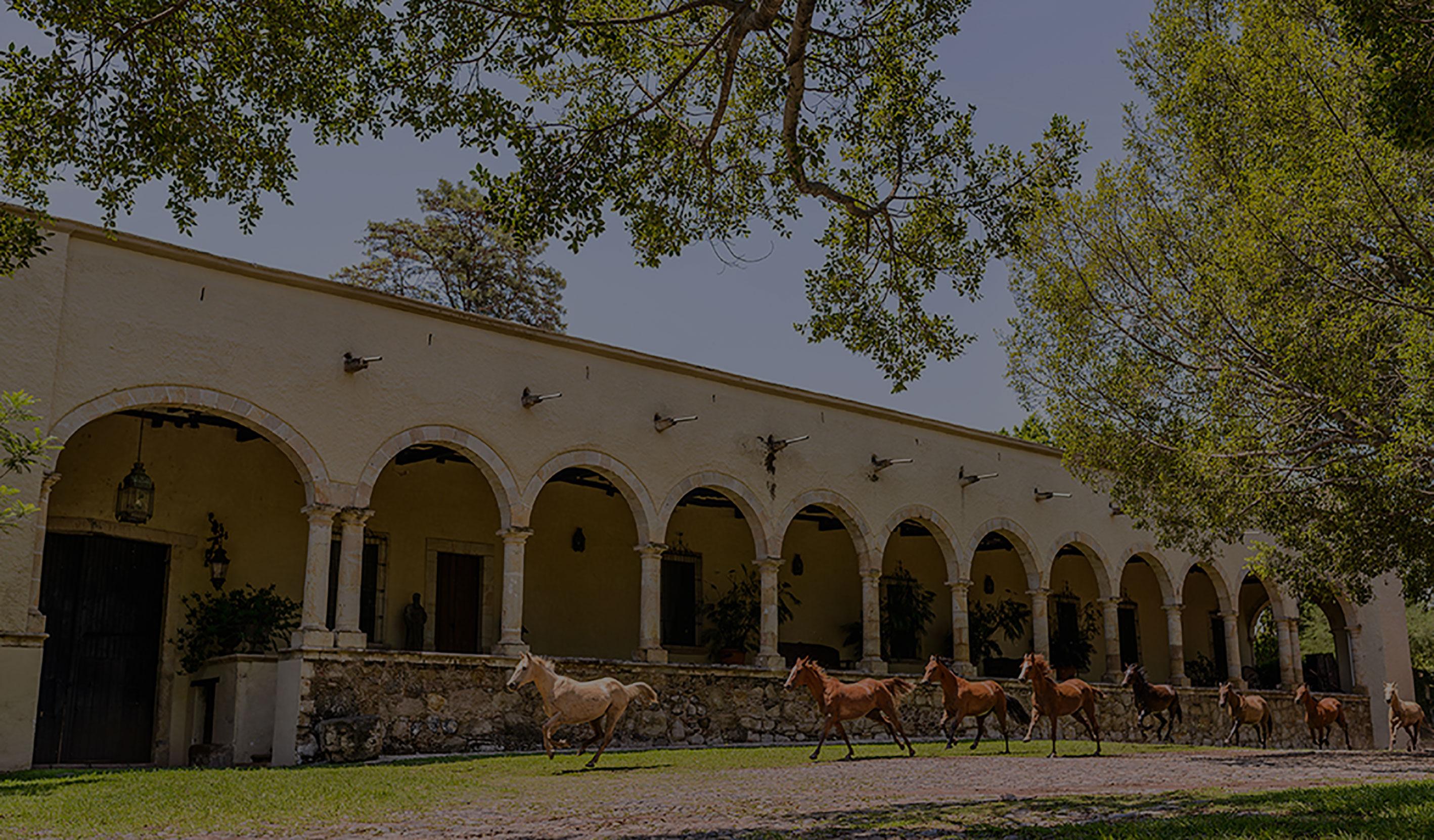 Hacienda Labor de Rivera *****