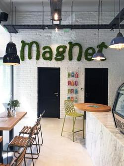 magnet bartók