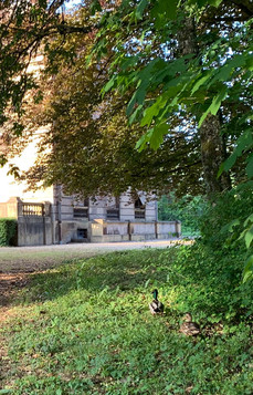 Cols verts devant le Château de Bétange