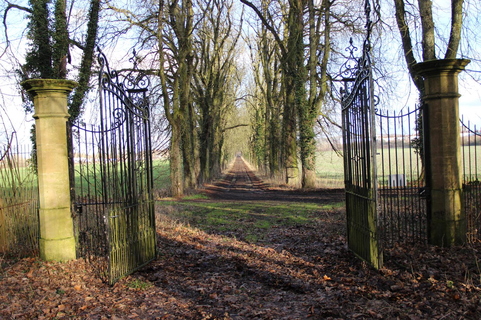La grille et l'allée des maronniers, menacée par le projet d'autoroute A31bis, Château de Bétange