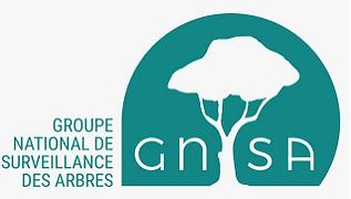 Logo GNSA