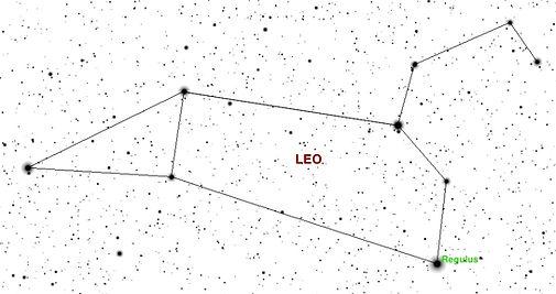 Leo beschriftet.jpg