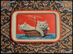 Trays Two Kittens.jpg