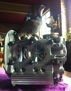 bird on engine casing
