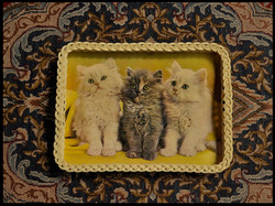 Trays Three kittens 01.jpg