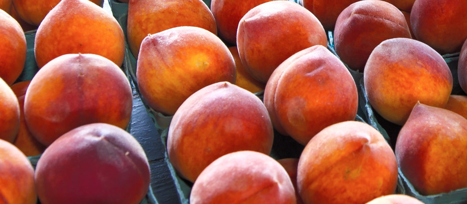 Freezing Our Peaches for Fall