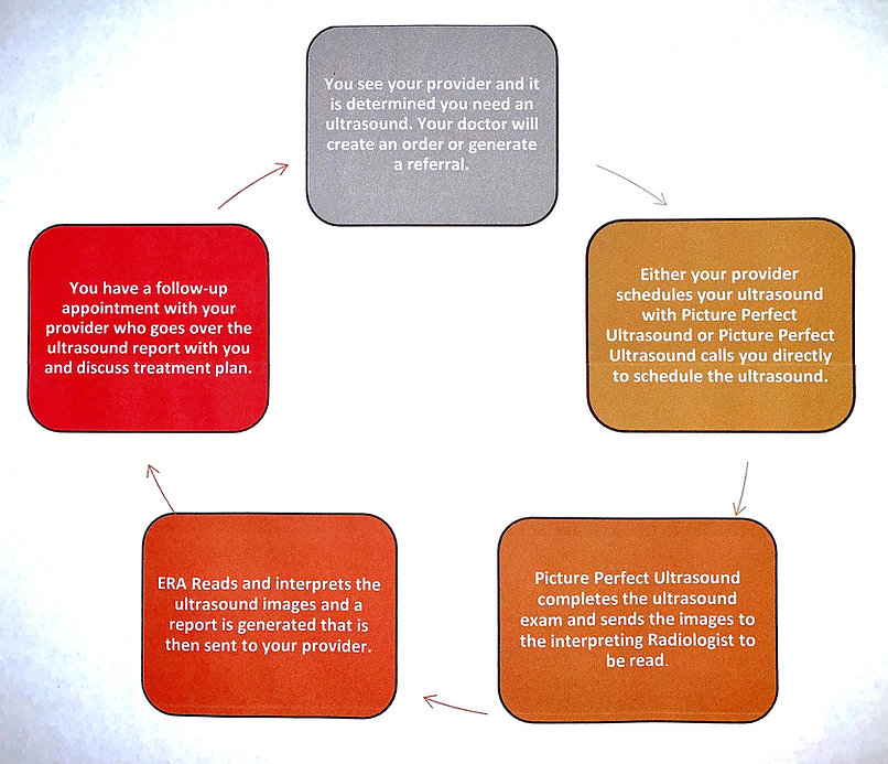 Process Flow Chart for Picture Perfect U