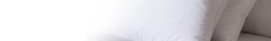 pillowtrans.jpg