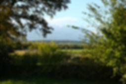 Chambres d'hôtes proches de Taizé - Vue du jardin