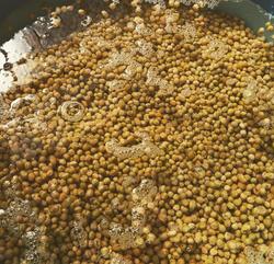 味噌づくり用の大豆