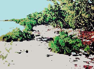 Landscape.jpg