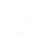 Envirowise_Icon-GreenLeaves.png