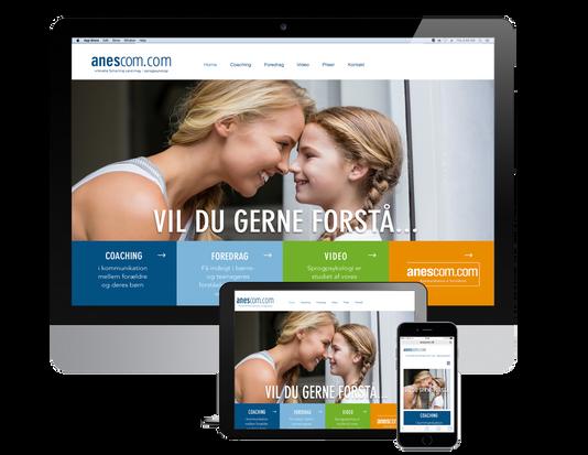 Anescom website