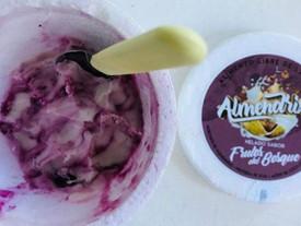 Almendrix, helado vegano desde el Alto Valle