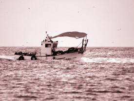 René, el pescador