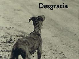 Desgracia, novela de J. Coetzee.