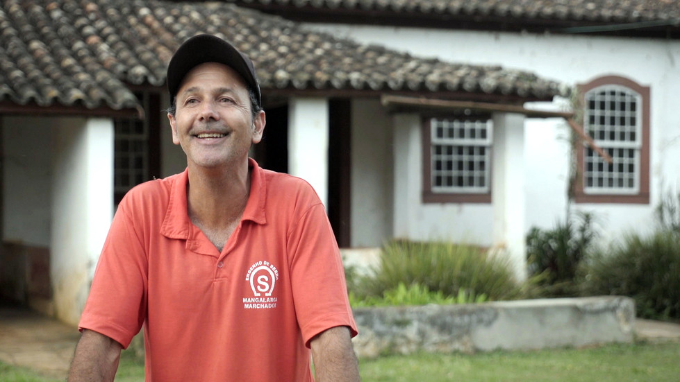 Renato Campos Meirelles
