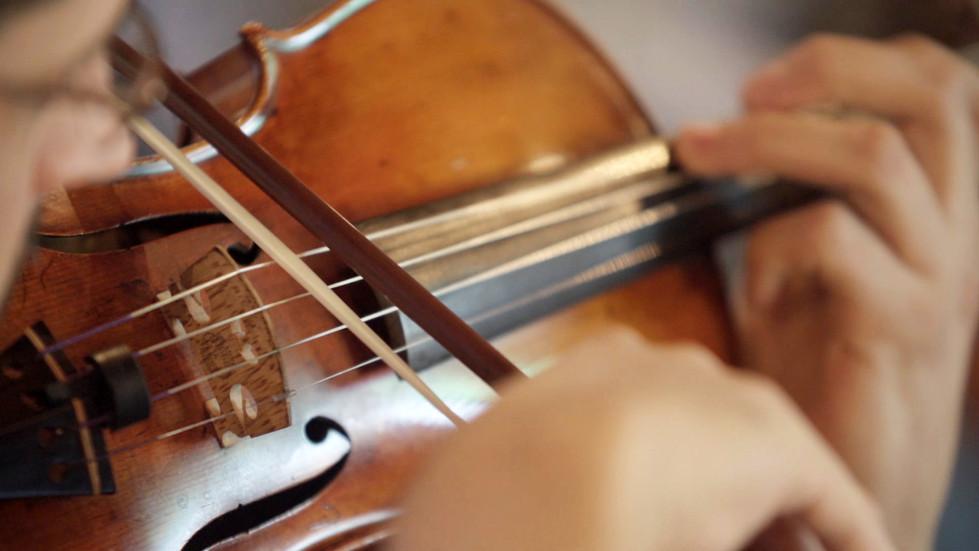 Violino | Prados
