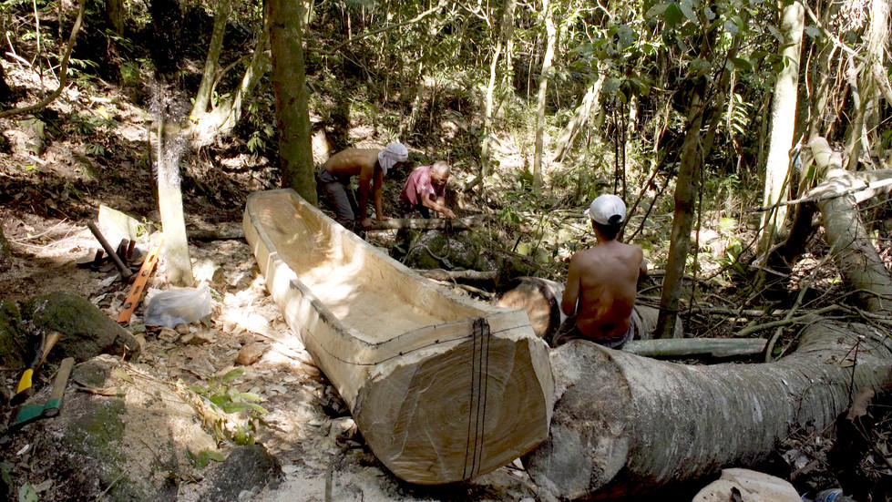 Construção da Canoa na Floresta