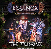 equinox2018_artist_mat-thetrichomes.png
