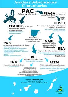 Ayudas y subvenciones en Canarias.png