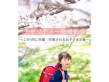 チャリティー桜撮影会 *満席となりました