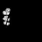 Logo Wild 2020 déclinaison_blanc.png