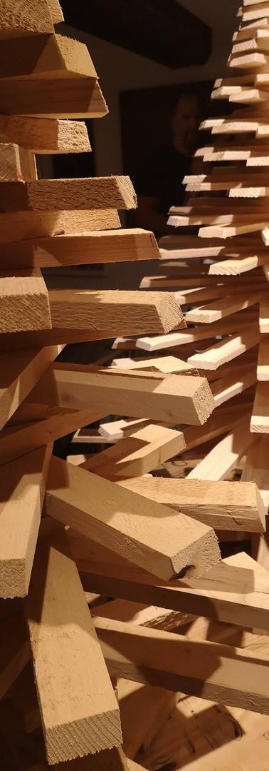 Sapin bois wild Wood Alsace