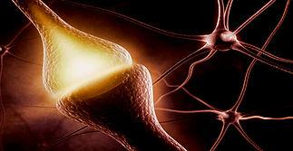 neuromédiateur.jpg