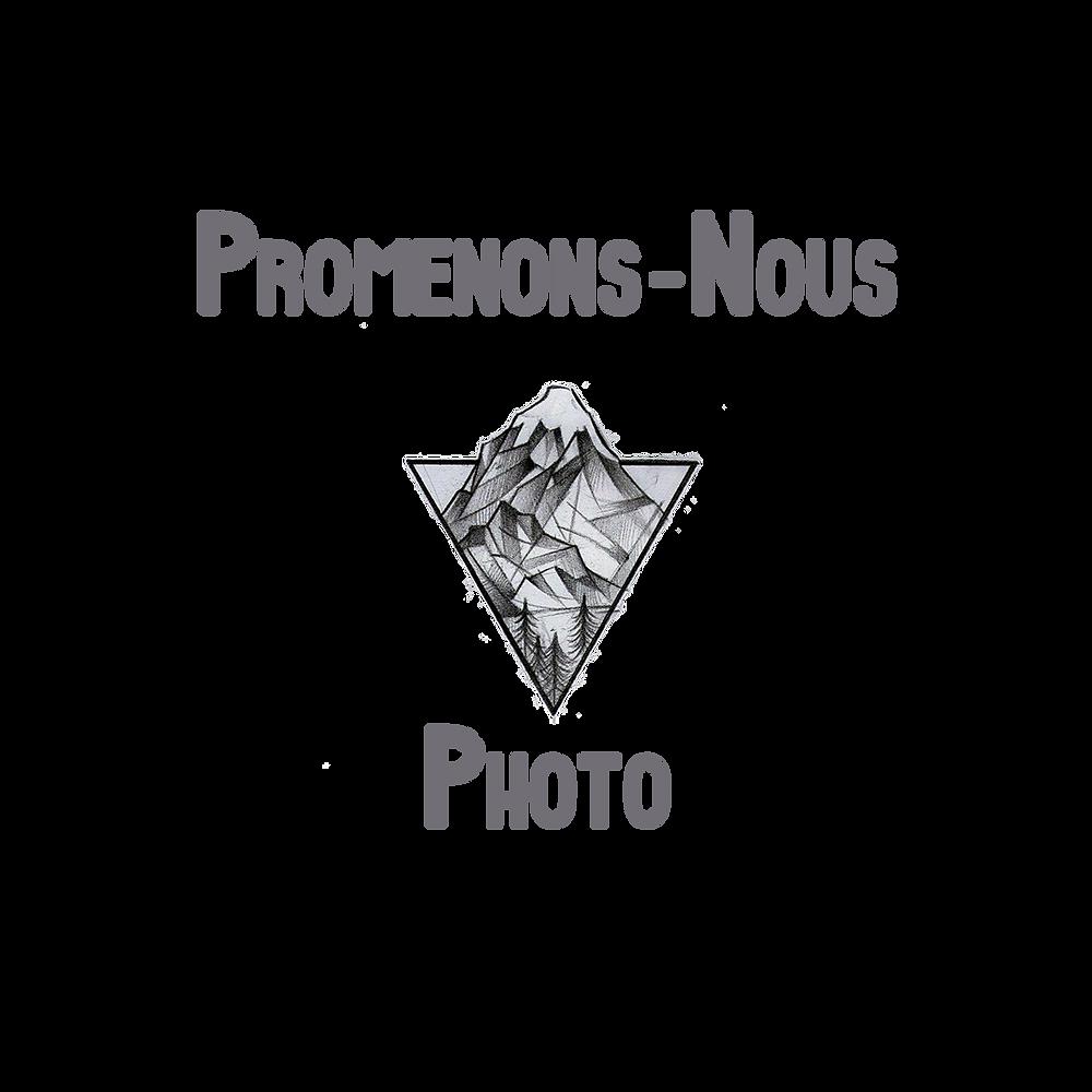 Logo Premenons-nous photo