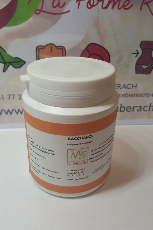 Baccharis