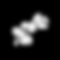 Logo_Wild_2020_déclinaison_Noir.png