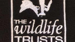 Going wild for The Lincolnshire Wildlife Trust