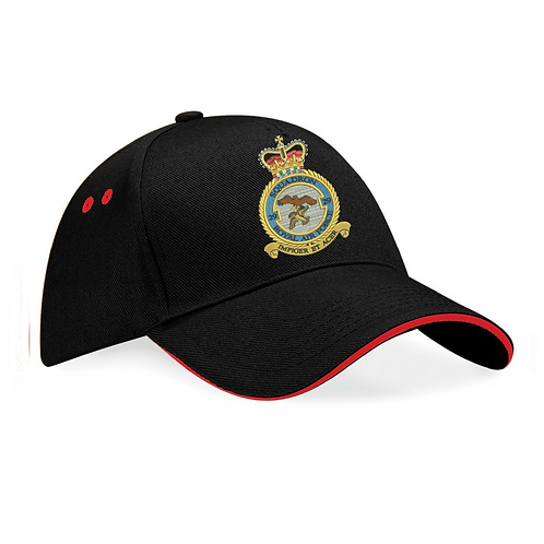 Typhoon Display Team badge cap