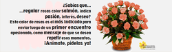 Rosas salmon