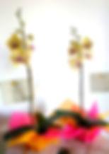 plantas 130milunidad_edited.jpg