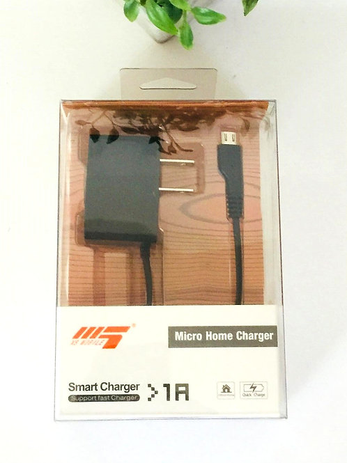 Micro Home Charger -1A