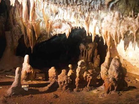 Küre Dağları Milli Parkı'nda 5 yeni mağara tespit edildi
