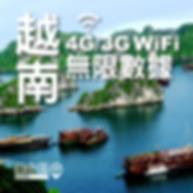 越南wifi蛋