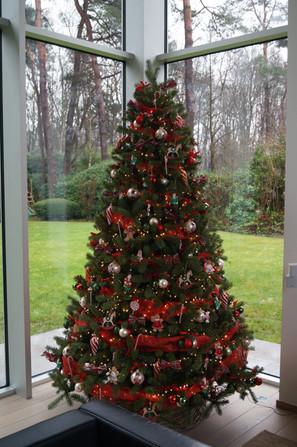 Kerstboom in privé
